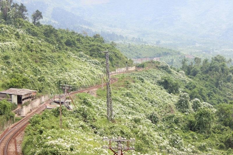 đường đi làng vân đà nẵng