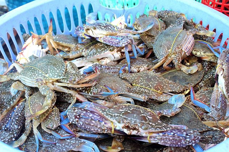 chợ hải sản ăn liền