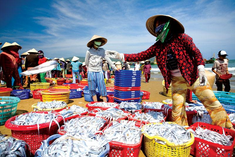 du lịch đà nẵng ăn hải sản gì